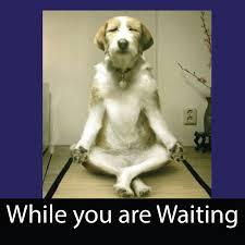 waiting - Copy